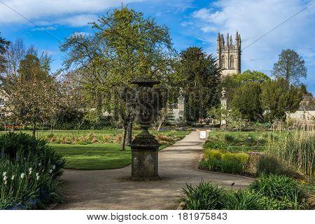 Oxford UK - 30 April 2016: Pond and plantation at University of Oxford Botanic gardens5