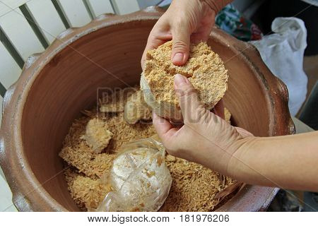 Break Mushroom To Paste Spreads All Over The Area.