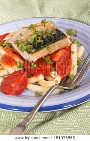 grilled mackerel mediterranean style with tagliatelle and tomato sauce on a plate