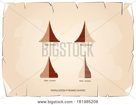 Population and Demography, Illustration of 4 Types of Population Pyramids Chart or Age Structure Graph on Old Antique Vintage Grunge Paper Texture Background.