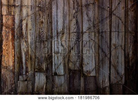 Old board fence with rusty nails and a barbed wire