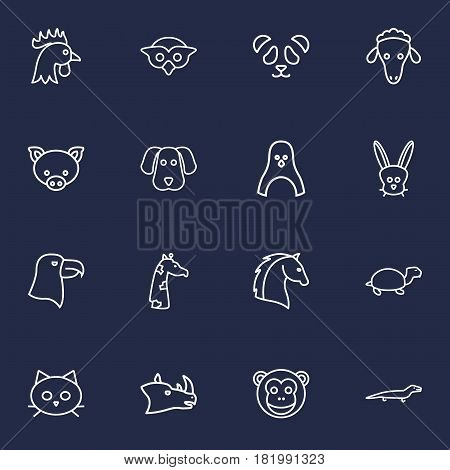 Set Of 16 Alive Outline Icons Set.Collection Of Turtle, Penguin, Eagle And Other Elements.