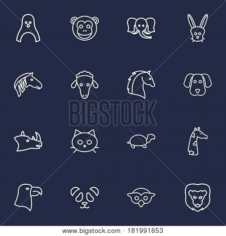 Set Of 16 Alive Outline Icons Set.Collection Of Rabbit, Giraffe, Owl And Other Elements.