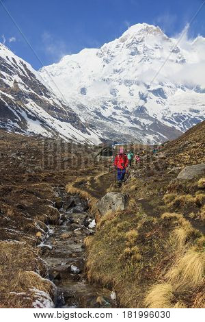 ANNAPURNA NEPAL - APRIL 14 2016 : Himalaya Annapurna base camp trekking trail with tourists nearby a river. It is a very famous trekking route in Nepal