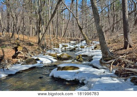 A landscape on very small river in forest spring.