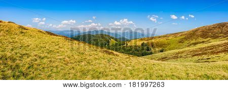 Hillside Panorama In Mountains