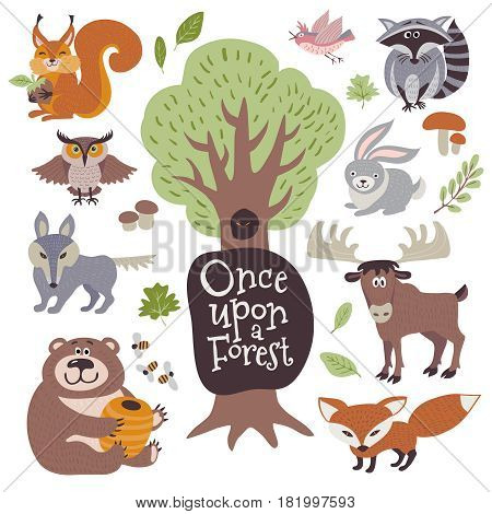 Cute cartoon and wild woodland animals and forest floral elements isolated on white vector set. Wwild forest animal wolf, raccoon, owl and squirrel. Illustration of cartoon characters animal