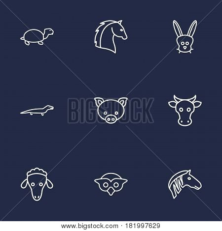 Set Of 9 Alive Outline Icons Set.Collection Of Mammal, Horse, Owl And Other Elements.