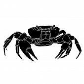 Aquatic crab, atlantic crab, gfraphic crab, ocean crab, seafood crab, icon crab, restaurant crab. Vector. poster