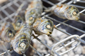 Sardines Cooking On Barbecue