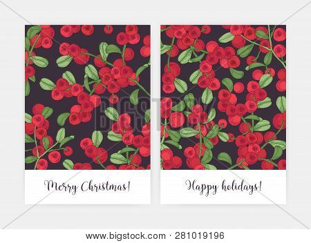 Set Of Greeting Card Or Postcard Templates Decorated With Lingonberry Sprigs Hand Drawn On Black Bac