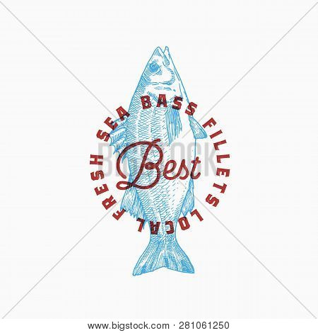 Best Local Sea Bass Fillets. Abstract Vector Sign, Symbol Or Logo Template. Hand Drawn Seabass With