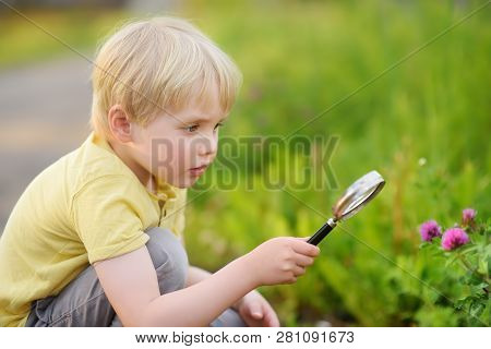 Charming Kid Exploring Nature With Magnifying Glass. Little Boy Looking At Flower With Magnifier. Su