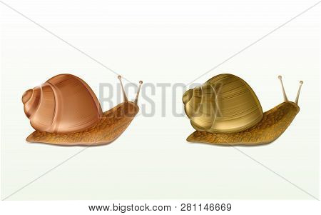 Two Creeping Burgundy Or Roman Snails 3d Vector Icons Isolated On White Background. French Cuisine D