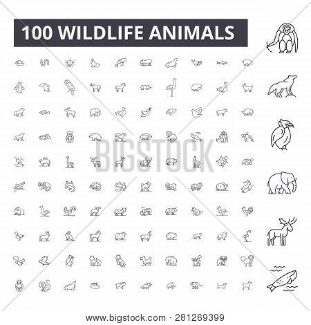 Wildlife Animals Editable Line Icons, 100 Vector Set, Collection. Wildlife Animals Black Outline Ill