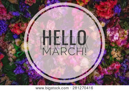 Banner Hello March. Greetings Of Spring. We Are Waiting For Spring. Hello March