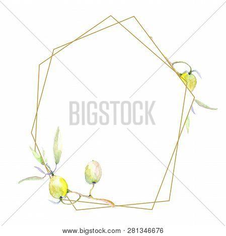 Olive Watercolor Background Illustration Set. Green Leaf. Leaf Plant Botanical Foliage. Frame Border