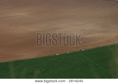 Cultivated Fields - Aerial View