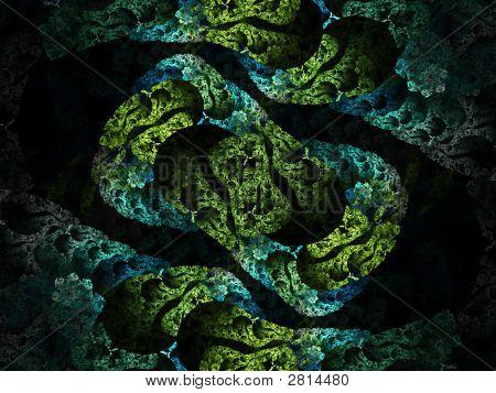 Cellular Mitosis