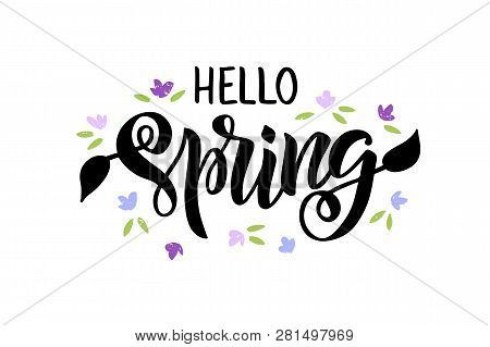Hello Spring - Hand Drawn Brush Lettering. Spring Season Advertising. Template With Purple Flowers F