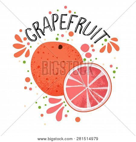 Vector Hand Draw Grapefruit Illustration. Half And Slice Of Grapefruits With Juice Splashes Isolated