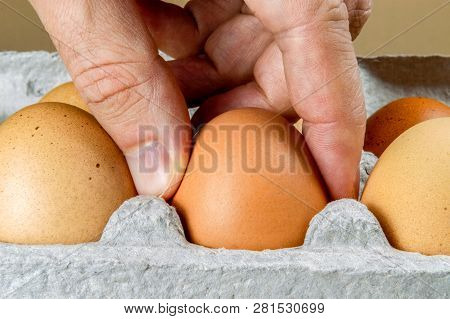 Close Up Of Male Hand Taking A Chicken Egg From A Cardboard Egg Box.