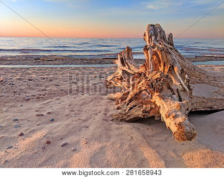 Driftwood And Sandy Lake Superior Beach At Sunset In Northwoods Michigan