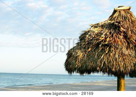Beach Tikki
