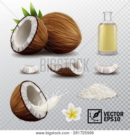3d Realistic Vector Set Of Elements (whole Coconut, Half Coconut, Coconut Chips, Splash Coconut Milk