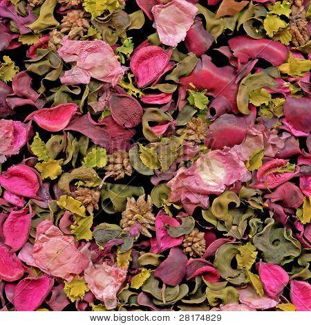 Close-up rose petals background