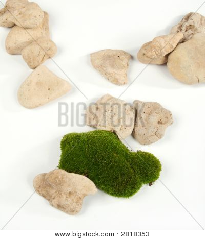 Green moss and gray stones on a white background poster