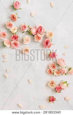 Roses And Petals Scattered On Textured Background, Overhead View.