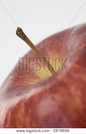 Apple Stem Closeup