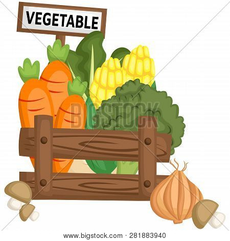 A Vegetable Basket Full Of Fresh Vegetables