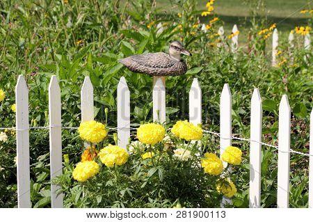 Duck Decoy Sitting On A Fence Post Bordering A Wildflower Garden.