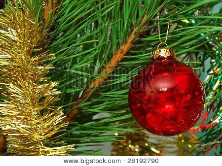 Red Glass Ball On The Cristmas Tree