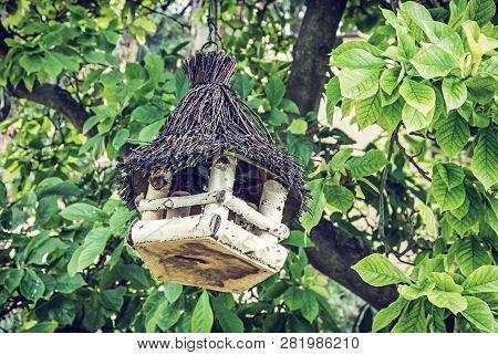Wooden bird house hanging on the green tree. Ornithology theme. Seasonal natural scene. Blue photo filter. poster