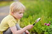 Charming kid exploring nature with magnifying glass. Little boy looking at flower with magnifier. Summer activity for inquisitive child poster