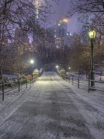 Central Park, Manhattan, New York City In Winter