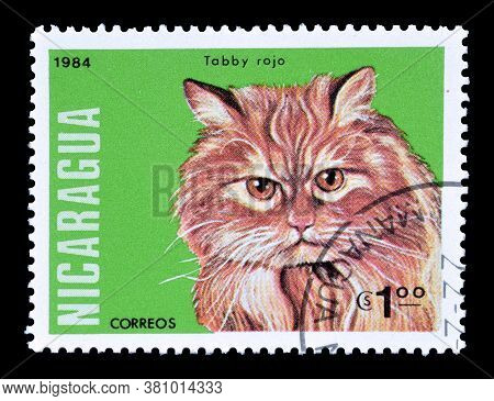 Nicaragua - Circa 1984 : Cancelled Postage Stamp Printed By Nicaragua, That Shows Red Tabby Cat, Cir