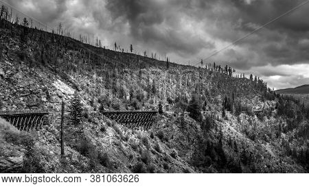 Black And White Photo Of A Wooden Trestle Bridge Of The Abandoned Kettle Valley Railway In Myra Cany
