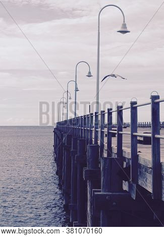 Image Of Docking Pier With White Seagull Flying