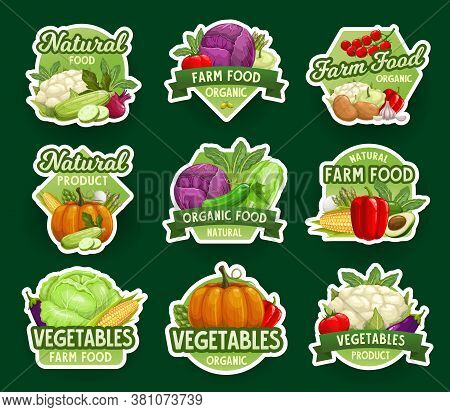 Farm Natural Vegetable Icons And Stickers, Vector Farm Food Veggies Market. Vegetables And Green Org