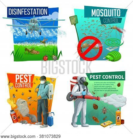 Pest Control Vector Icons, Disinsection Service, Insects Extermination At Home And Fields. Agricultu