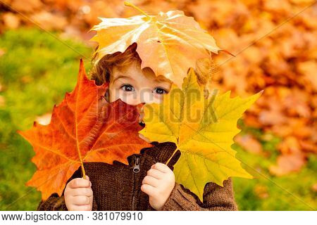 Autumn Baby Portrait In Fall Yellow Leaves, Little Child In Woolen Hat, Beautiful Kid In Park Outdoo