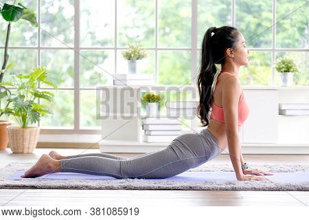 Asian Woman Practice Yoga, Body Stretch Exercise At Home, Young Asia Girl Doing Up Dog, Yoga Posture