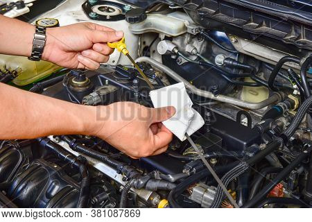 A Professional Mechanic Is Holding The Oil Dipstick Check The Oil Level In Car Engine