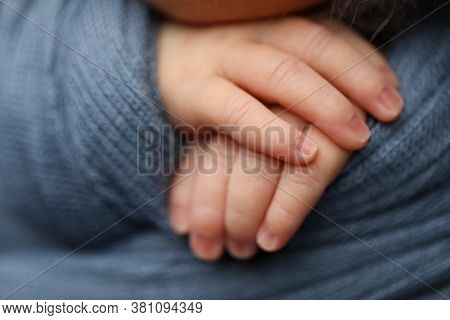 Hands Of A Newborn Baby Close Up.