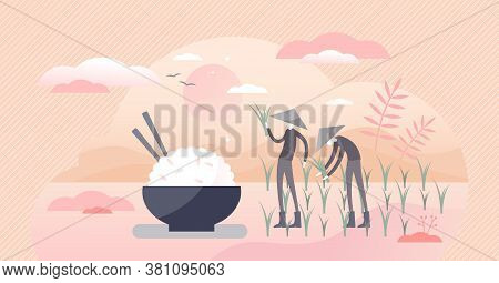 Rice Agriculture Harvest And Healthy Meal With Food Bowl Flat Tiny Persons Concept. Raw Traditional
