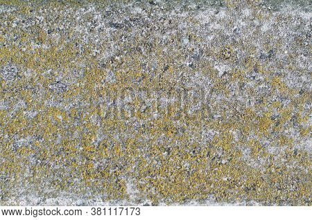 Texture Of Old Concrete Grunge Wall With Lichen Moss Mol. Solid, Antique.
